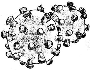Informasjon ifm. corona-viruset